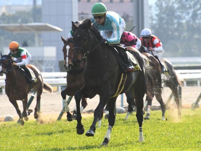 無敗の桜花賞馬デアリングタクトは2枠4番