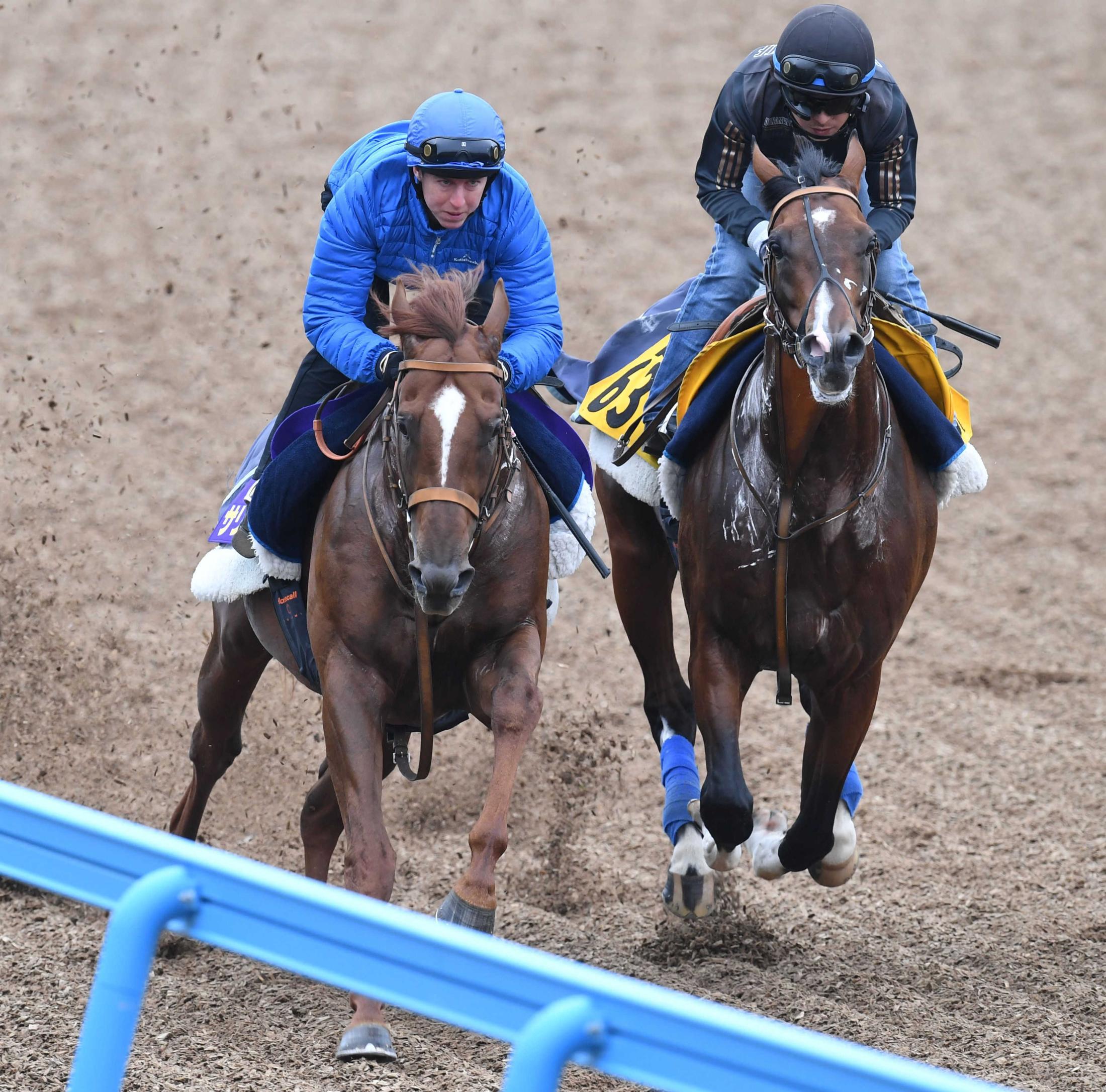 美浦Wでの併せ馬で力強い走りを見せたサリオス(左)