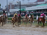 【海外競馬】ユニコーンS、JDダービーがケンタッキーダービー選定競走に追加