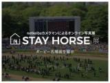 【ウェブ写真展】競馬カメラマンが厳選!ダービー名場面を集めた『STAY HORSE展』を開催中