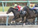 【川崎・関東オークス 登録馬発表】セラン&武豊騎手など