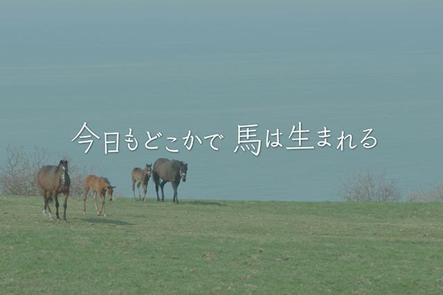 ドキュメンタリー映画「今日もどこかで馬は生まれる」