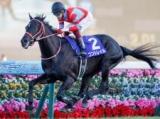 【本日の注目ポイント】競馬の祭典・日本ダービー!最終Rは伝統の目黒記念