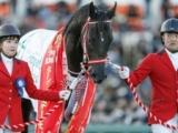 【日本ダービー・馬体重】コントレイルは460kg(-2)、サリオスは528kg(-8)