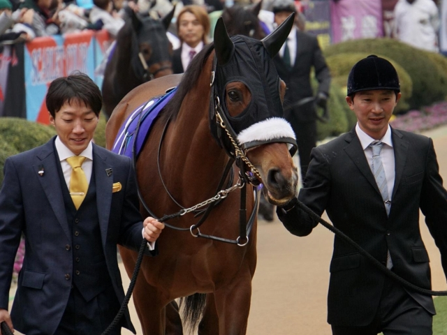 安田記念に出走予定のアーモンドアイ(写真は有馬記念出走時、ユーザー提供:ペトルーシュカさん)