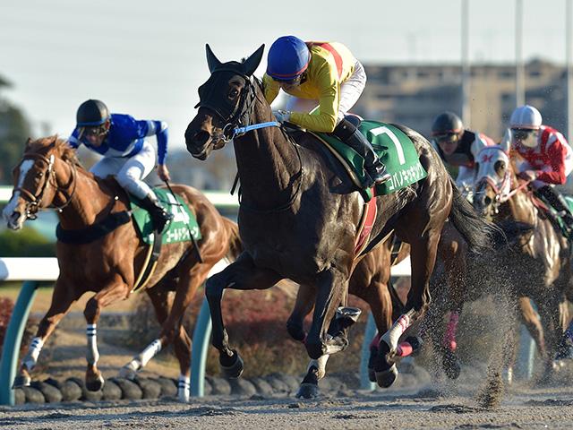コパノキッキングは武豊騎手と新コンビ(写真は2019年カペラS出走時、撮影:小金井邦祥)