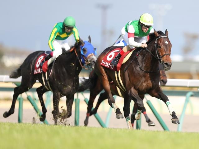 GI・3勝目を狙う昨年の皐月賞馬サートゥルナーリアは3枠5番(撮影:高橋正和)