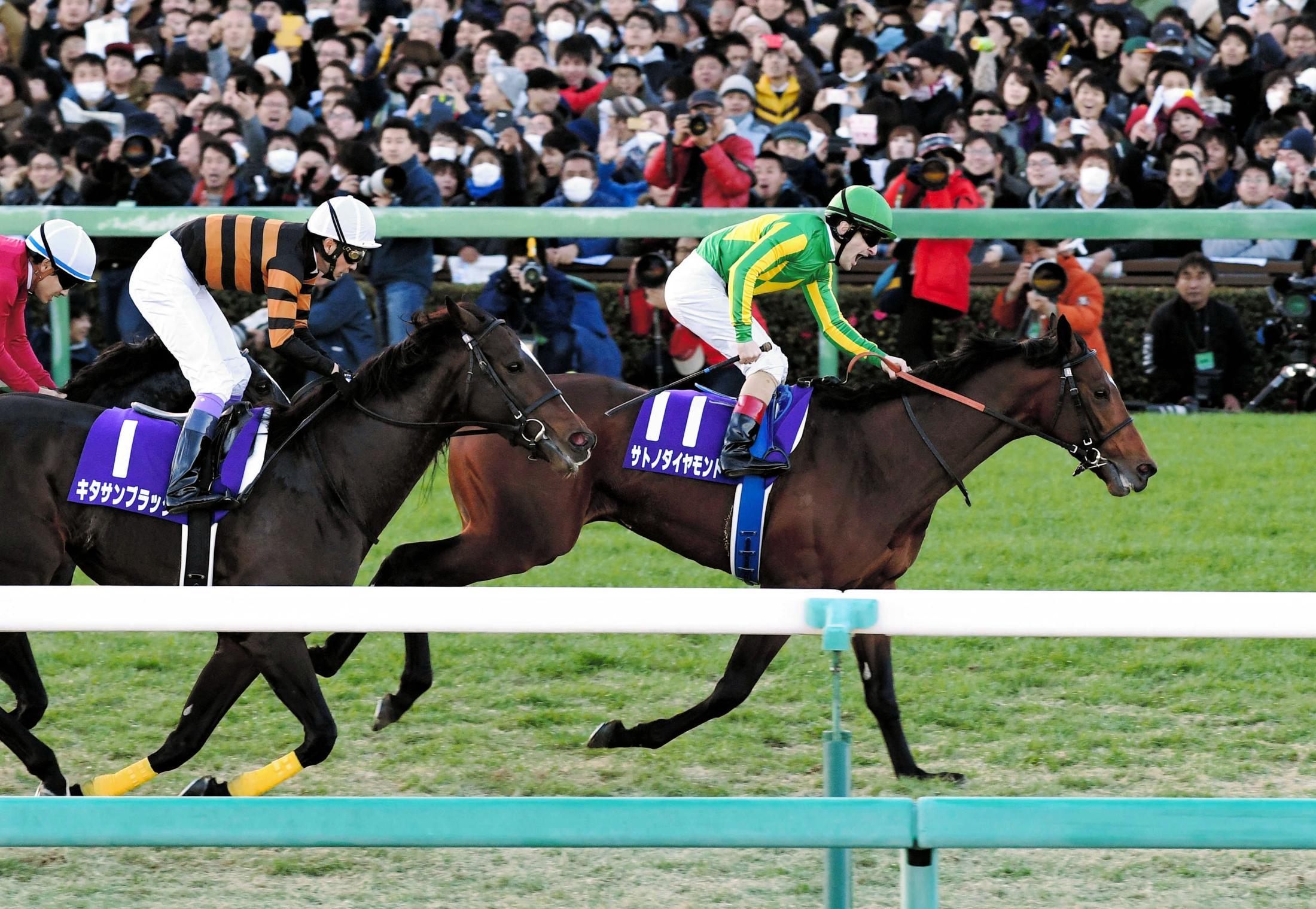 2016年有馬記念を制したサトノダイヤモンド(右)と2着キタサンブラック