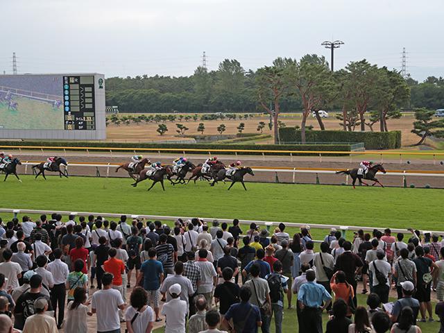 実績馬の多くが休養している夏のローカル競馬は確たる軸馬を見つけづらいレースが多く、波乱が多発する舞台となっている(写真はイメージ)