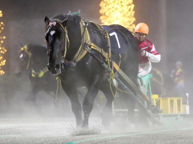 島津新騎手騎乗の2番人気コマサンダイヤが優勝(写真提供:ばんえい十勝)