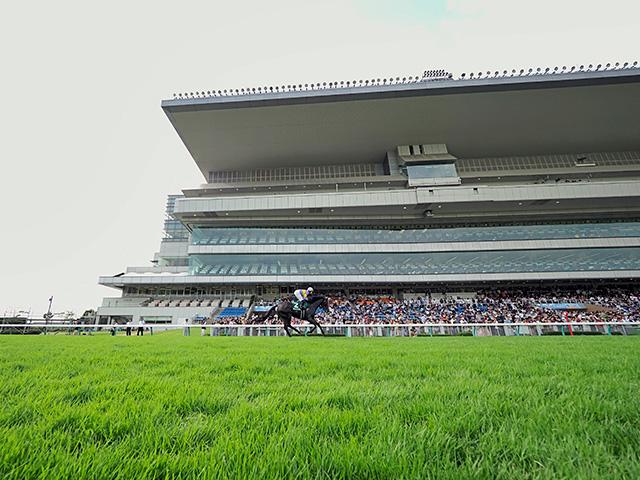 観客入場が取りやめとなる新潟競馬場(撮影:下野雄規、写真は2019年アイビスSD時)