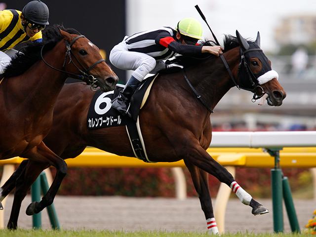 今回の『ケシウマ』に該当してしまったカレンブーケドール。牝馬も活躍しているレースだけに、取捨は慎重を期したい(撮影:下野雄規)