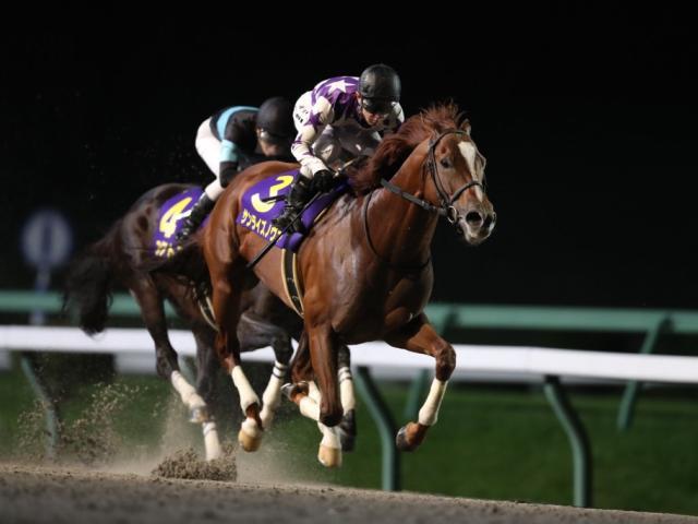 【マイルCS南部杯】(10月12日、盛岡)JRA所属の出走予定馬および補欠馬について