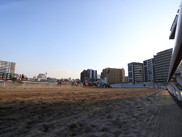 川崎競馬場(撮影:高橋正和)