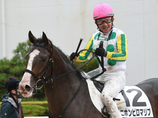 小牧太騎手騎乗の7番人気ニホンピロマリブが勝利した(c)netkeiba.com