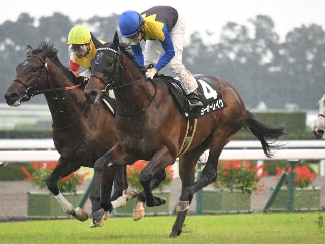 紫菊賞で勝利したヨーホーレイク