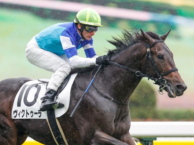 M.デムーロ騎手騎乗の3番人気ヴィクトゥーラが新馬勝ち(c)netkeiba.com、撮影:下野雄規