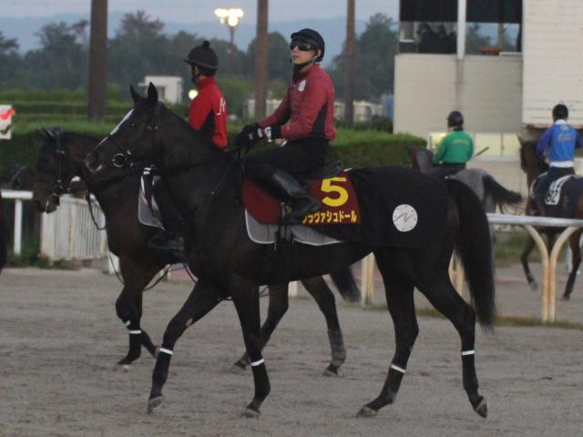 どこからでも競馬ができるのがクラヴァシュドールの強みだという(撮影:花岡貴子)