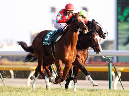 東京巧者クラレント、エプソムCで3つ目の重賞タイトルへ(写真は2013年東京新聞杯、撮影:下野雄規)