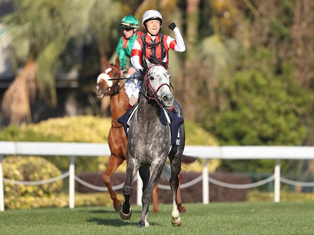 昨年の香港Cは日本馬ウインブライトが優勝(撮影:高橋正和)