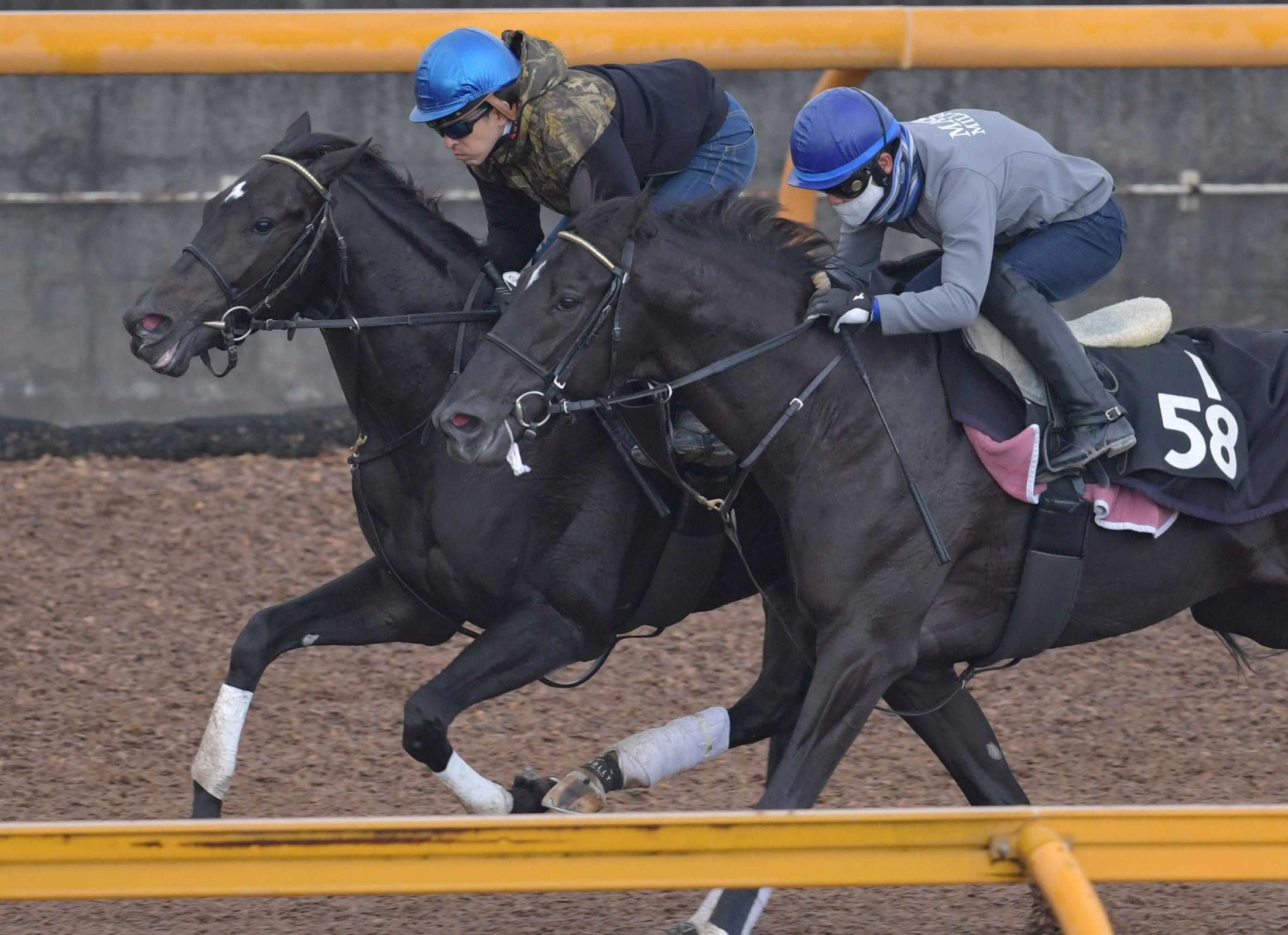 重賞初Vを目指すレッドベルオーブ(左)は力強い動きを披露(撮影・佐々木彰尚)