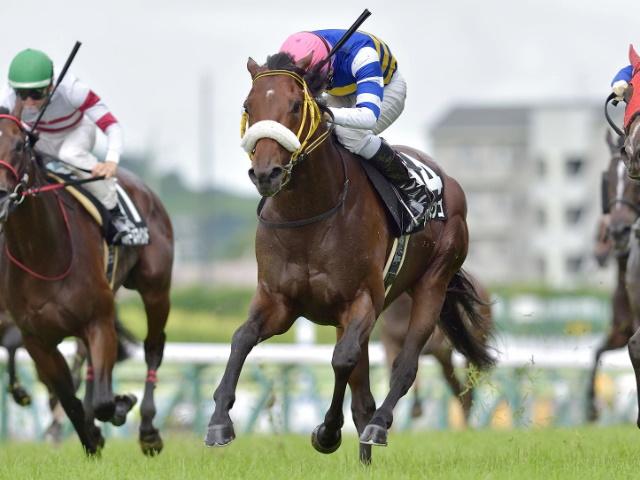 【福島記念 出走馬・騎手確定】ヴァンケドミンゴ&酒井学騎手、デンコウアンジュ&柴田善臣騎手など16頭