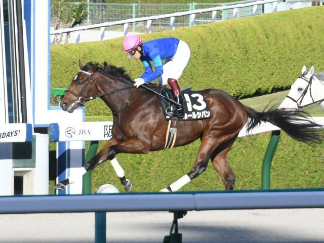 福永祐一騎手騎乗の8番人気ホールシバンが勝利