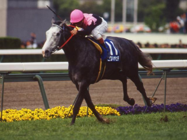 改修前の1994年、阪神3200mで行われた天皇賞・春はビワハヤヒデが優勝