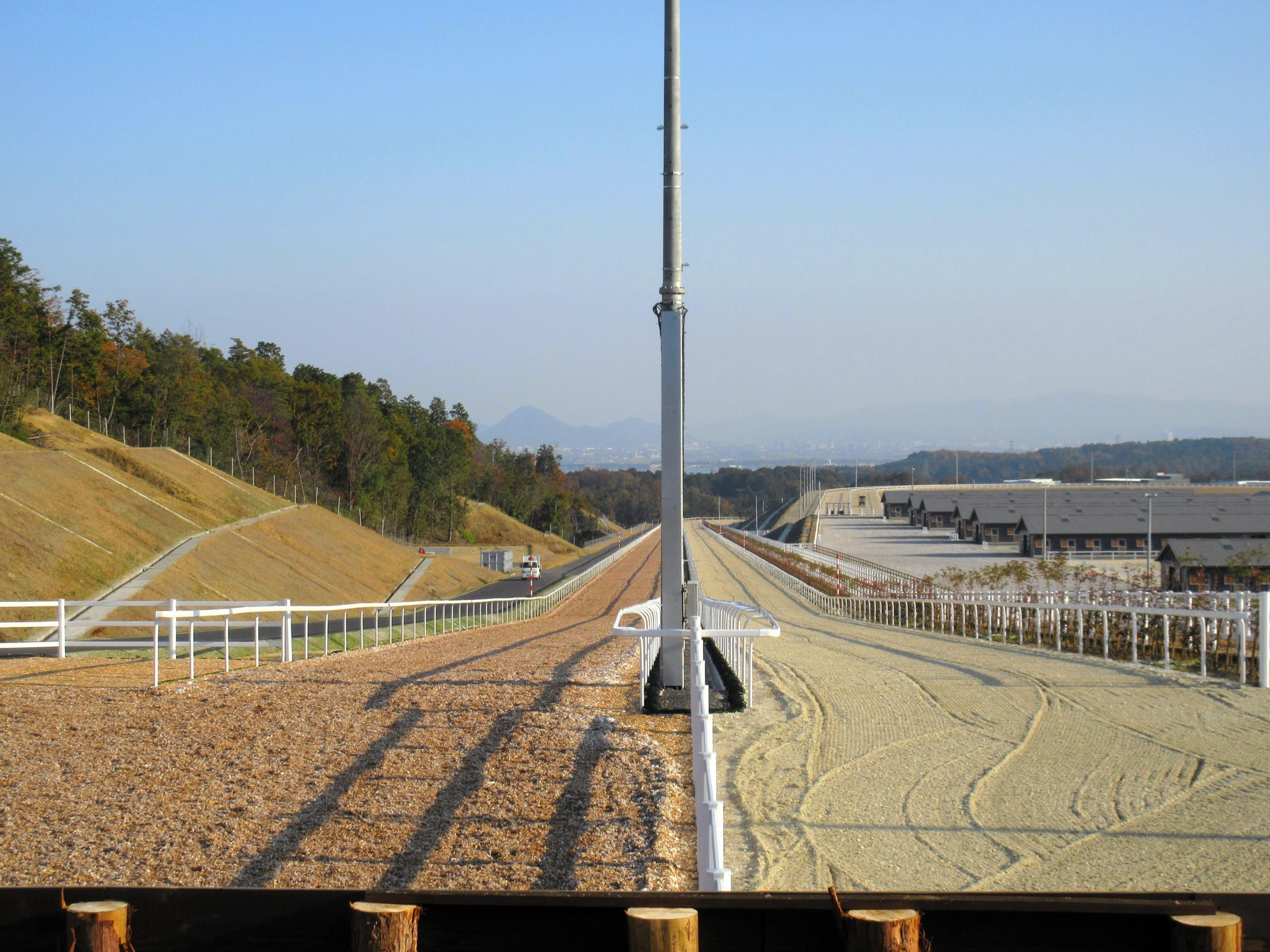 チャンピオンヒルズ自慢の真っすぐに伸びる坂路。左がウッドチップで、右がフェルトダート