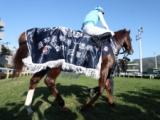 【香港国際競走】ウインブライト・アドマイヤマーズら日本馬6頭が招待受諾 ヴァーズを除く3競走に参戦