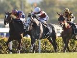 【香港国際競走予想】香港カップは日本馬による連覇濃厚!? マイル、スプリントで地元馬の牙城を崩せるか?/海外レース展望