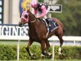 【海外競馬】香港の名マイラー・ビューティージェネレーションが引退 豪州で余生を過ごす