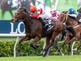【香港国際競走】日本馬6頭が帰国 今年は香港スプリントと香港カップを勝利