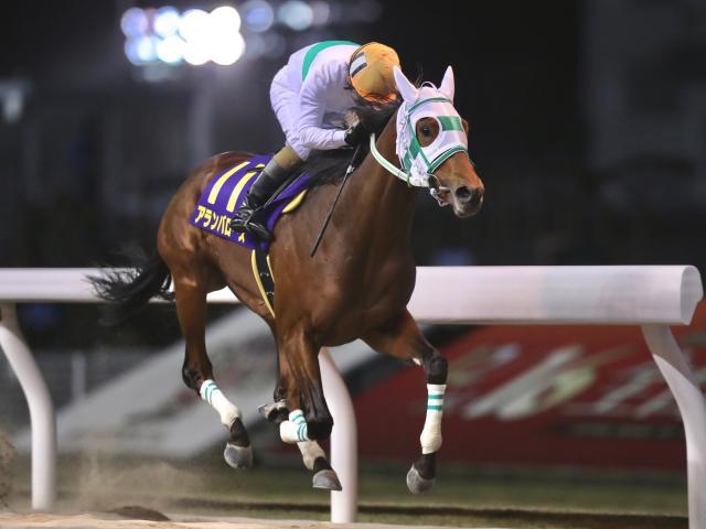 地方馬アランバローズが2歳ダート王の座に輝く(撮影:高橋正和)