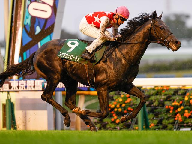 前走横山典騎手との初コンビで重賞を制したステラヴェローチェ(c)netkeiba.com、撮影:下野雄規