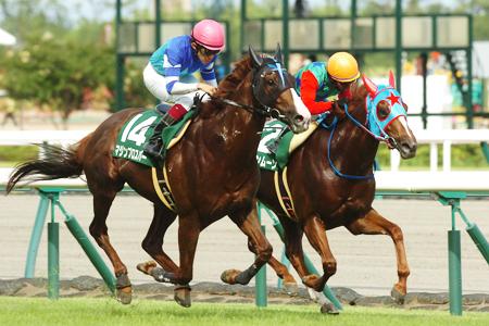 福永祐一騎手騎乗のマジンプロスパーが逃げるハクサンムーンをゴール前できっちり差し切り連覇達成
