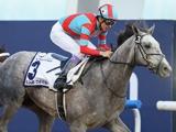 【海外競馬】来年のドバイWC総賞金は1200万ドルで変わらず、UAEダービーは7割減の75万ドルに