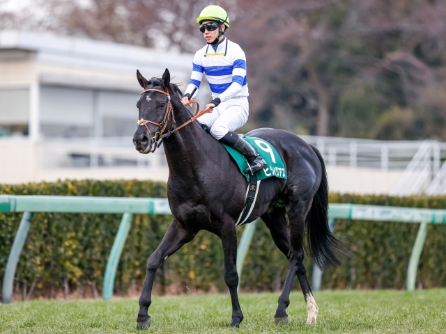勝利したヒシイグアスと松山騎手(c)netkeiba.com、撮影:下野雄規