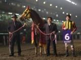 【船橋・船橋記念】キャンドルグラスの連覇なるか/レースの見どころ