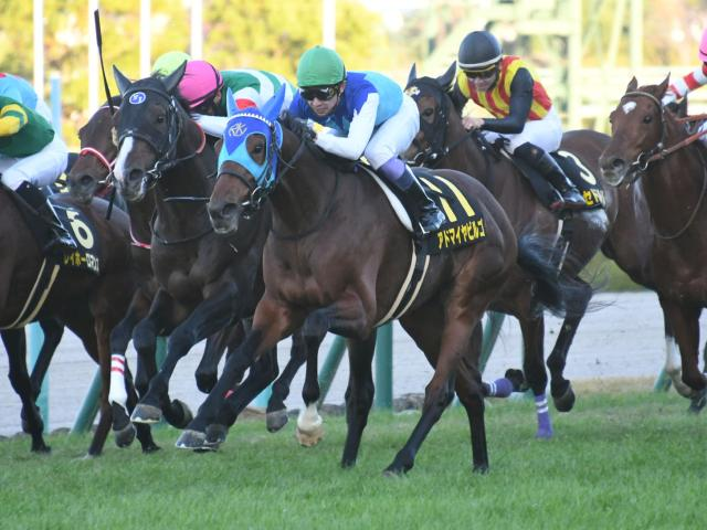 超高額馬アドマイヤビルゴが重賞初制覇に挑む