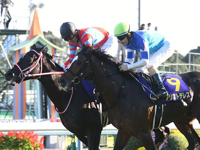 昨年の菊花賞で三冠馬コントレイルを追い詰めたアリストテレス