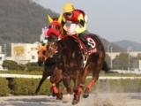 【姫路・兵庫クイーンセレクション結果】ニジイロが悲願の重賞初制覇