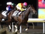 【船橋・チバテレ盃】日本ダービー3着馬コズミックフォースが準重賞制覇! 移籍後初勝利を挙げる