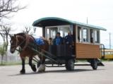 【地方競馬】ばんえい十勝のPR馬「キング号」が死亡 23日から献花台を設置