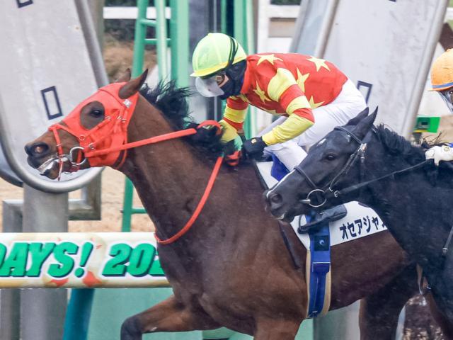 C.ルメール騎手騎乗の1番人気オセアジャスティスが新馬勝ち(c)netkeiba.com、撮影:下野雄規