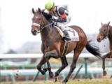 【中山6R新馬戦結果】3番人気カレンレベンティスが差し切りV