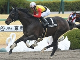 【先週のJRA抹消馬】JRA唯一の現役11歳馬カフェリュウジンが抹消、最年長はオジュウチョウサンなど10歳馬に