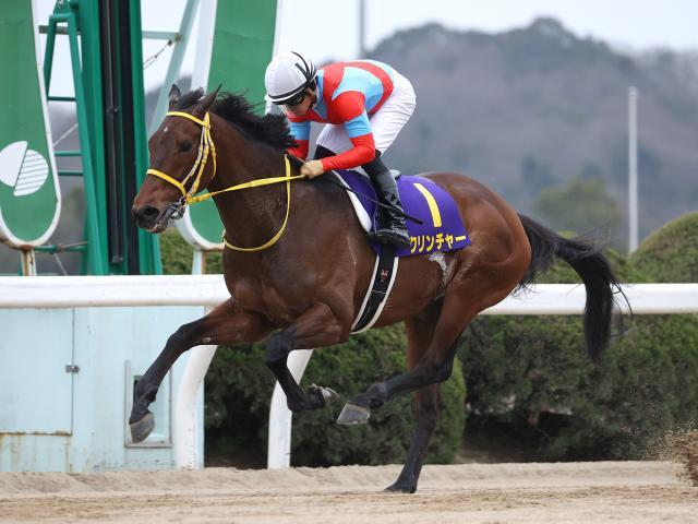 佐賀記念を9馬身差で圧勝したクリンチャー(撮影:稲葉訓也)