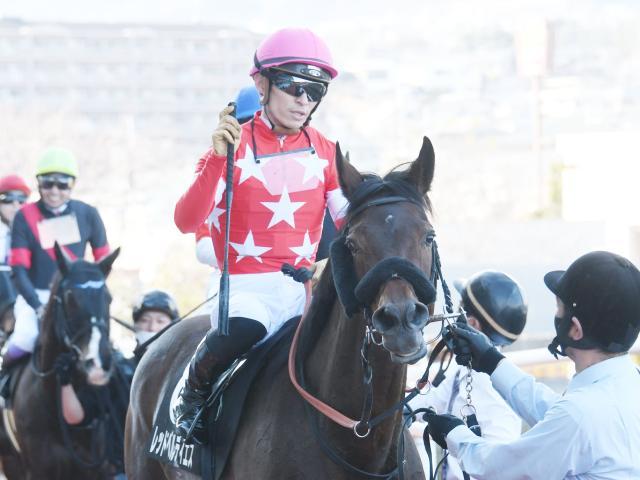 川田将雅騎手を背に4勝目を挙げたレッドベルディエス(c)netkeiba.com