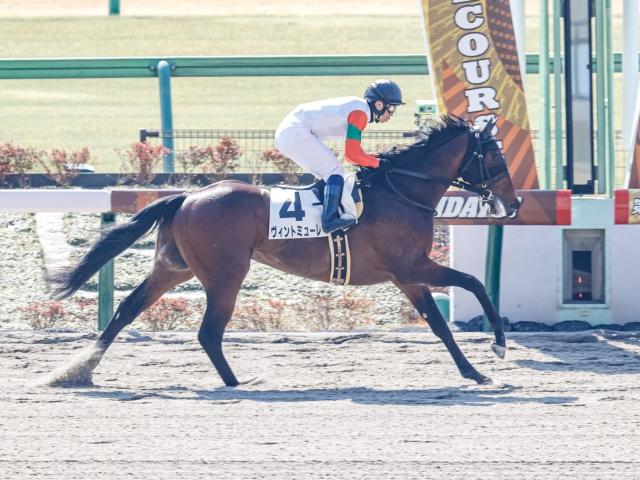 新馬戦で見事勝利したヴィントミューレ(c)netkeiba.com、撮影:下野雄規